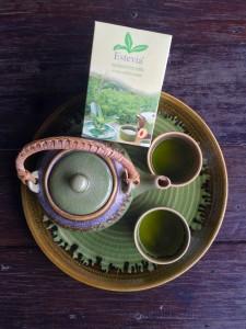 www.estevia-herb.com